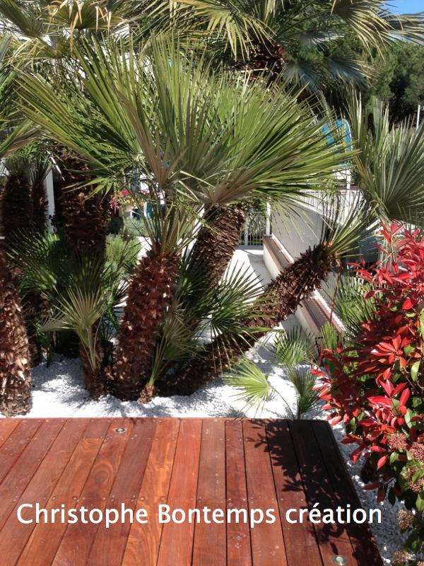 Création terrasse et plantation La Grande Motte